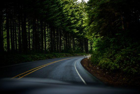stok's Road to Zero: A Carbon Offset and Zero Waste Journey